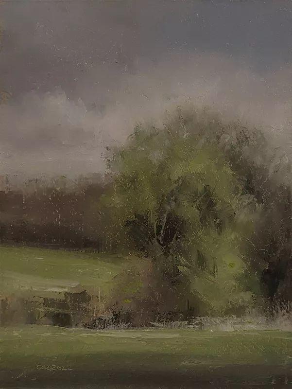 静物花卉与风景——英国画家Neil Carroll系列4插图28
