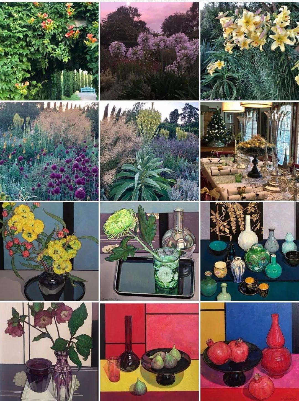 她72岁,画了50多年的画,花儿在她笔下都有了个性!插图19