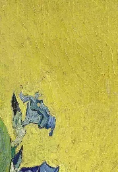 """世人皆知梵高的向日葵,可能不知还有"""" 它们 """"插图5"""