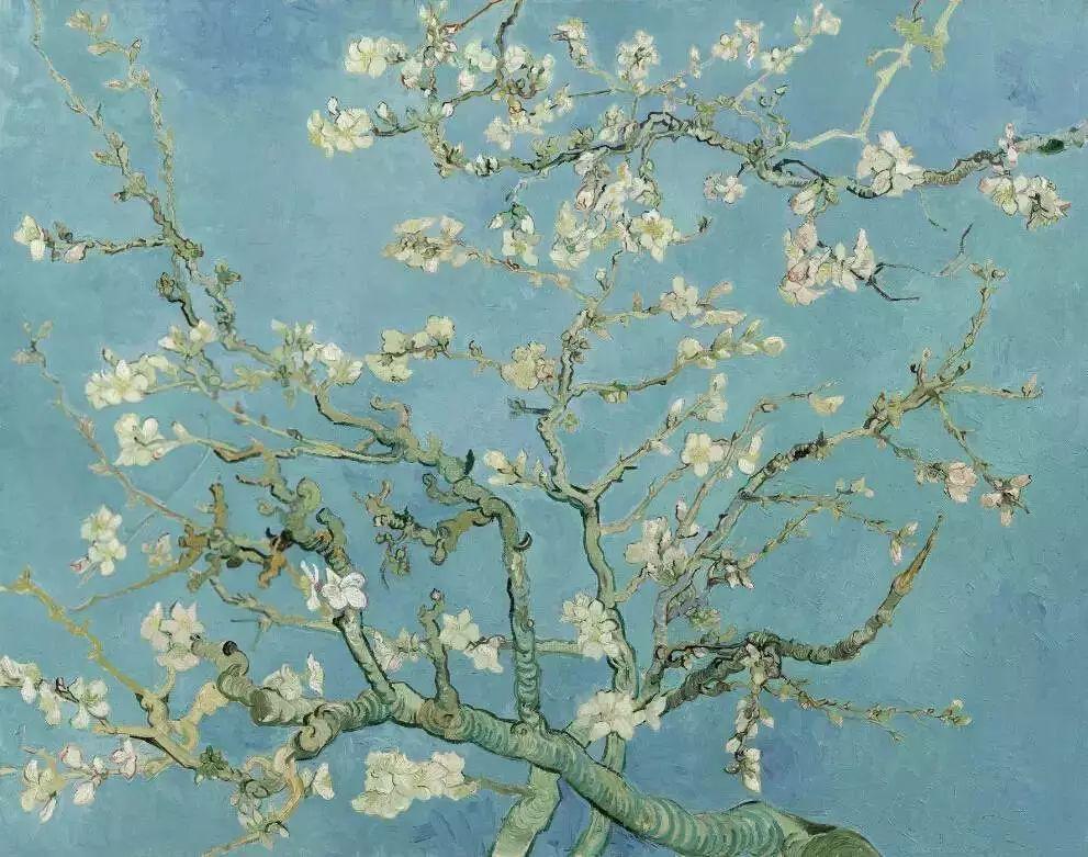 """世人皆知梵高的向日葵,可能不知还有"""" 它们 """"插图13"""