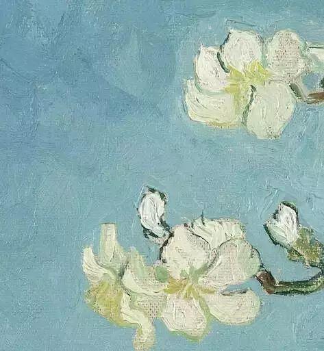 """世人皆知梵高的向日葵,可能不知还有"""" 它们 """"插图14"""