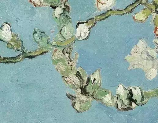 """世人皆知梵高的向日葵,可能不知还有"""" 它们 """"插图15"""