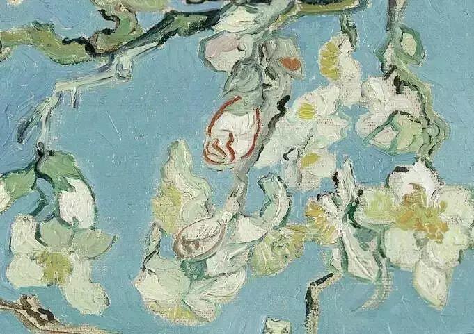"""世人皆知梵高的向日葵,可能不知还有"""" 它们 """"插图16"""