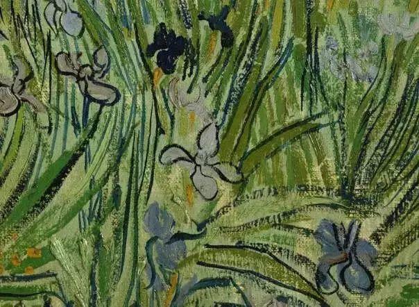 """世人皆知梵高的向日葵,可能不知还有"""" 它们 """"插图36"""