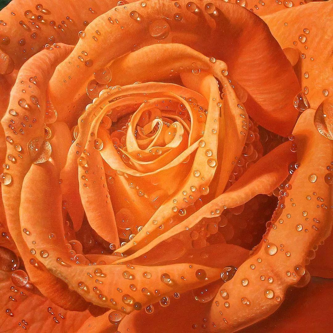 他用一块画布,就能将其变成一个露珠覆盖的玫瑰花园插图9