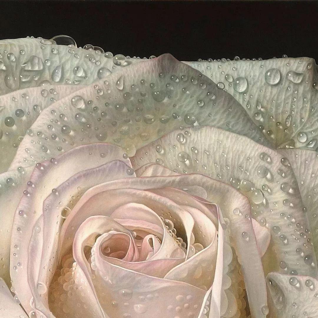 他用一块画布,就能将其变成一个露珠覆盖的玫瑰花园插图12