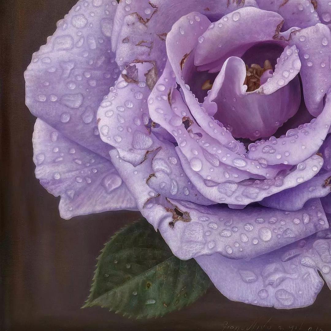 他用一块画布,就能将其变成一个露珠覆盖的玫瑰花园插图18