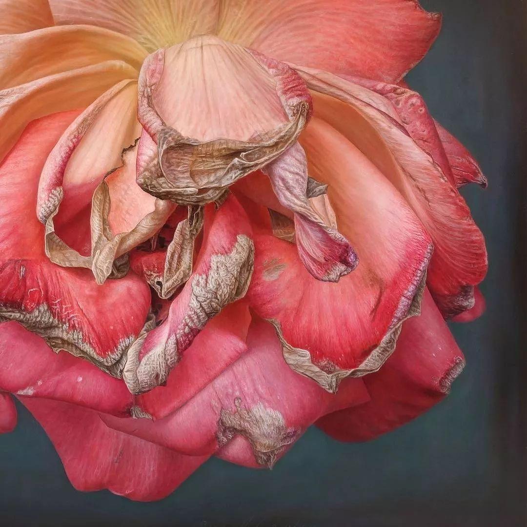 他用一块画布,就能将其变成一个露珠覆盖的玫瑰花园插图22