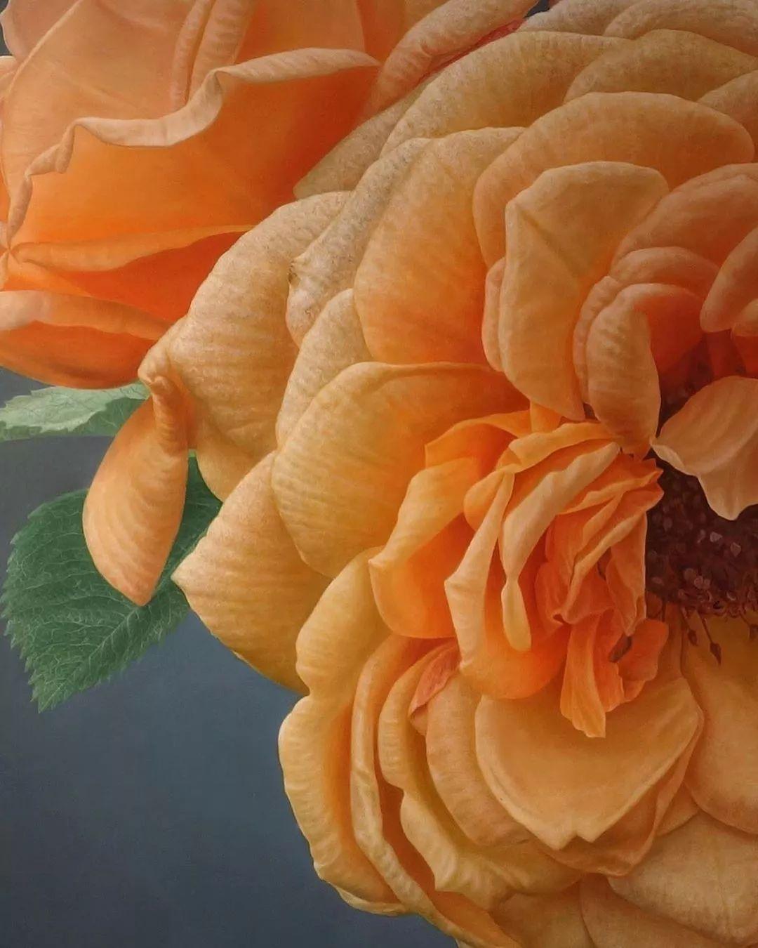 他用一块画布,就能将其变成一个露珠覆盖的玫瑰花园插图26