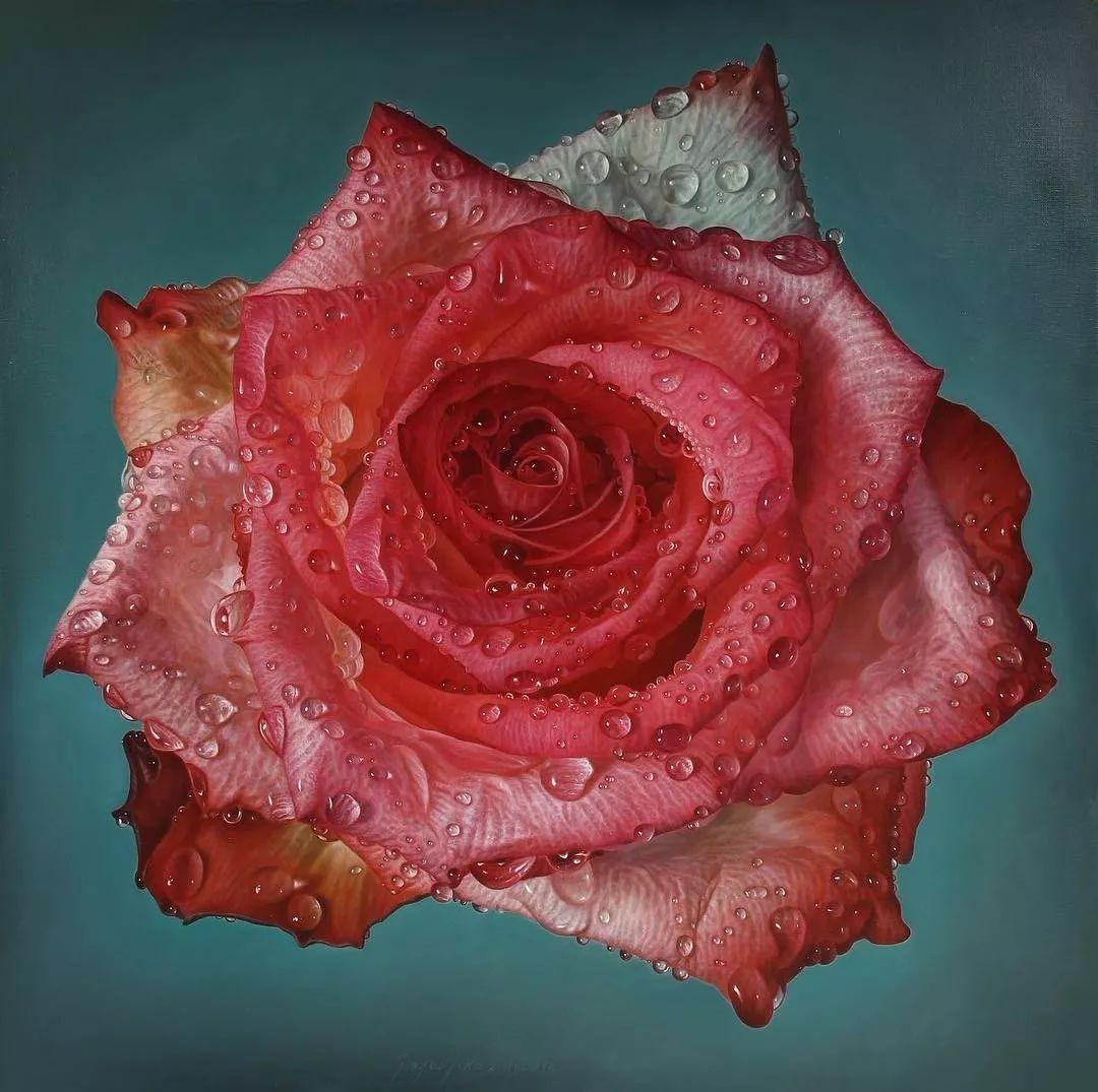 他用一块画布,就能将其变成一个露珠覆盖的玫瑰花园插图31
