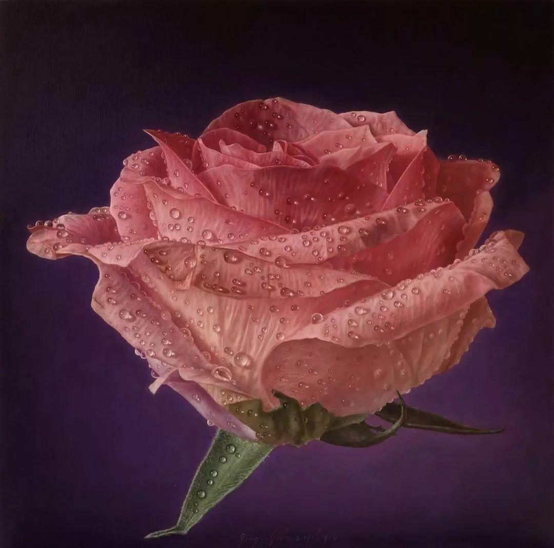 他用一块画布,就能将其变成一个露珠覆盖的玫瑰花园插图33