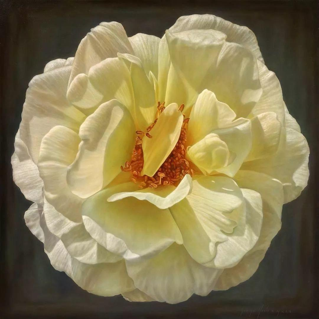 他用一块画布,就能将其变成一个露珠覆盖的玫瑰花园插图39