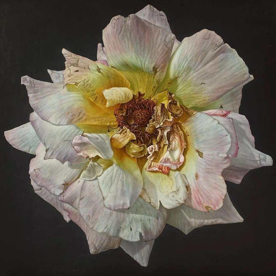 他用一块画布,就能将其变成一个露珠覆盖的玫瑰花园插图43