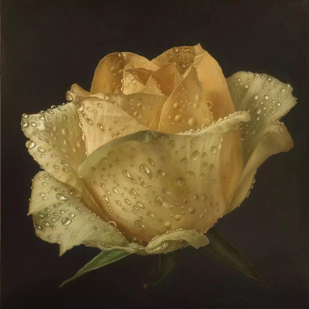 他用一块画布,就能将其变成一个露珠覆盖的玫瑰花园插图46