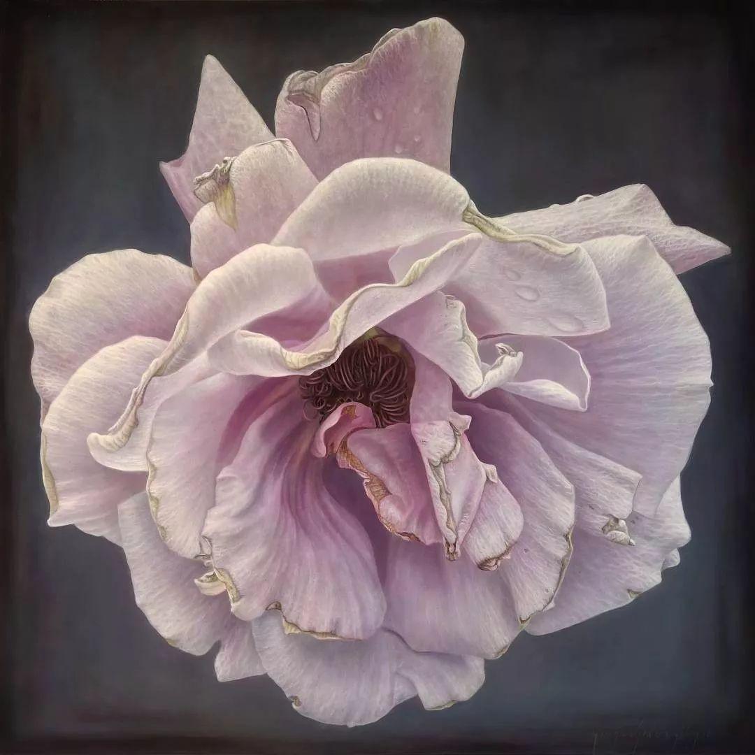 他用一块画布,就能将其变成一个露珠覆盖的玫瑰花园插图49
