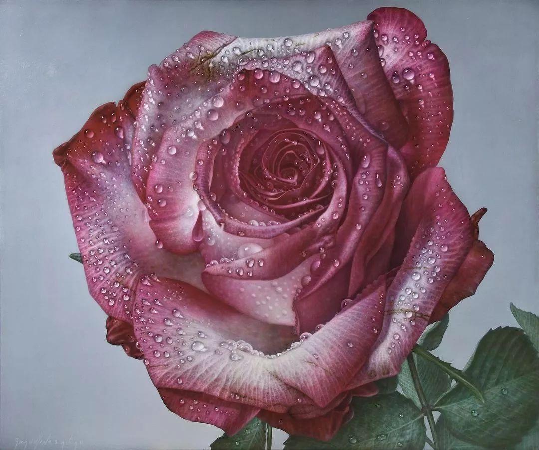他用一块画布,就能将其变成一个露珠覆盖的玫瑰花园插图52