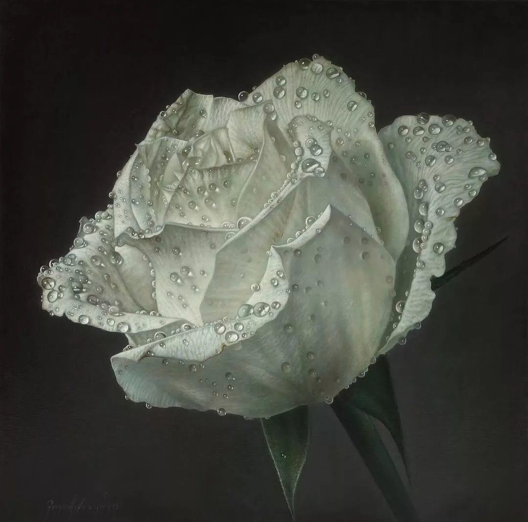 他用一块画布,就能将其变成一个露珠覆盖的玫瑰花园插图55