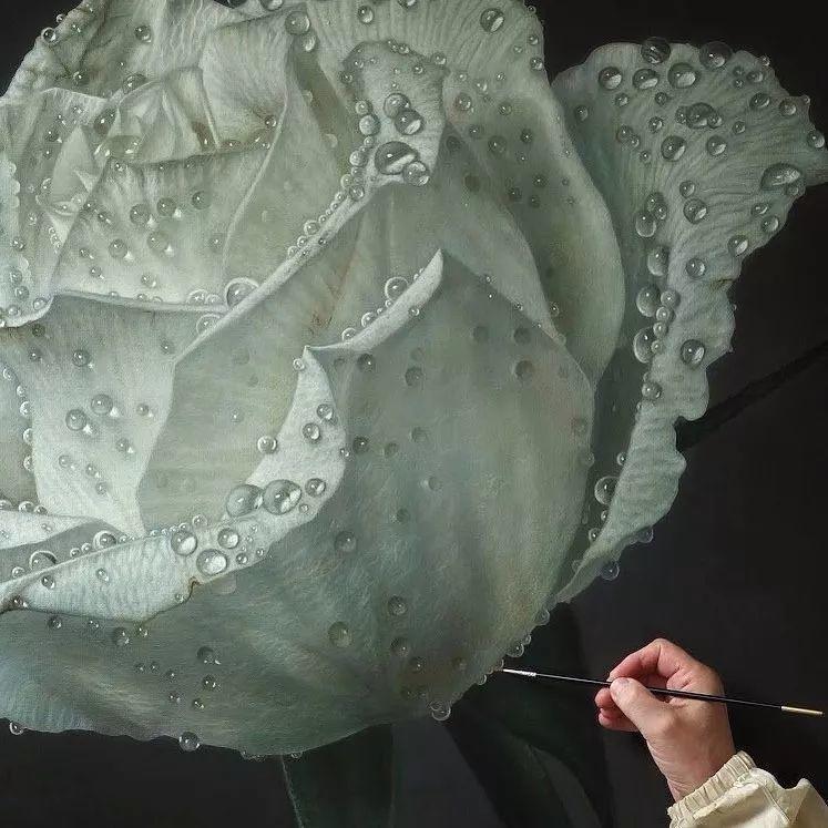 他用一块画布,就能将其变成一个露珠覆盖的玫瑰花园插图56