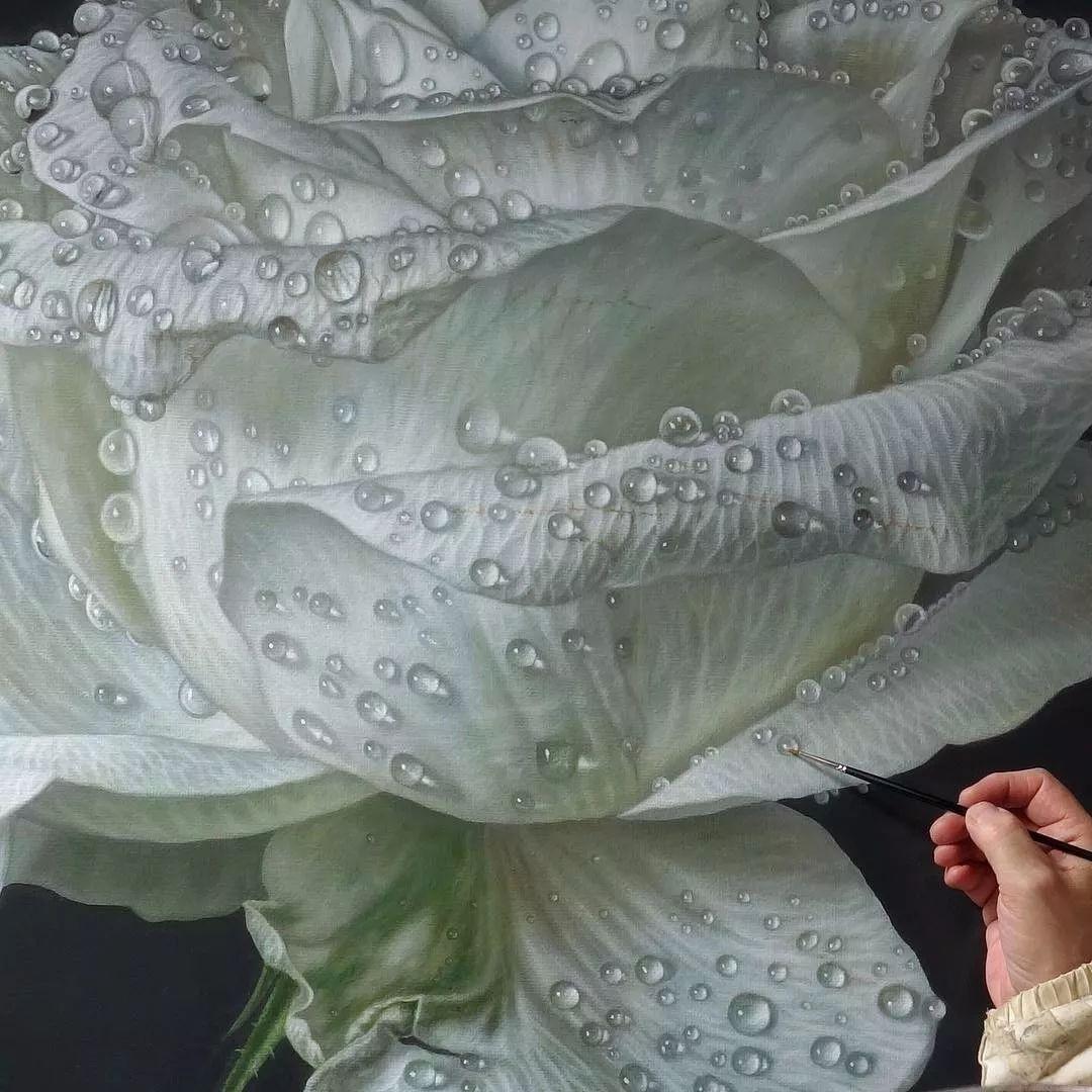 他用一块画布,就能将其变成一个露珠覆盖的玫瑰花园插图60