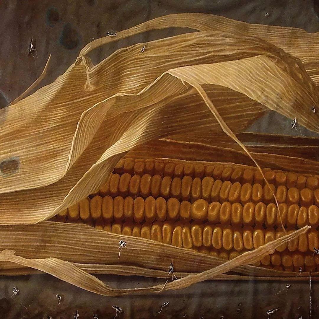 超写实静物 意大利画家Gioacchino Passini 二插图14