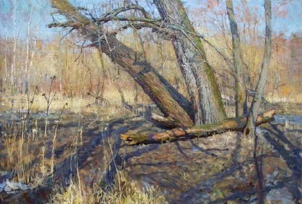 风景油画18幅,俄罗斯画家雅罗斯拉夫插图19