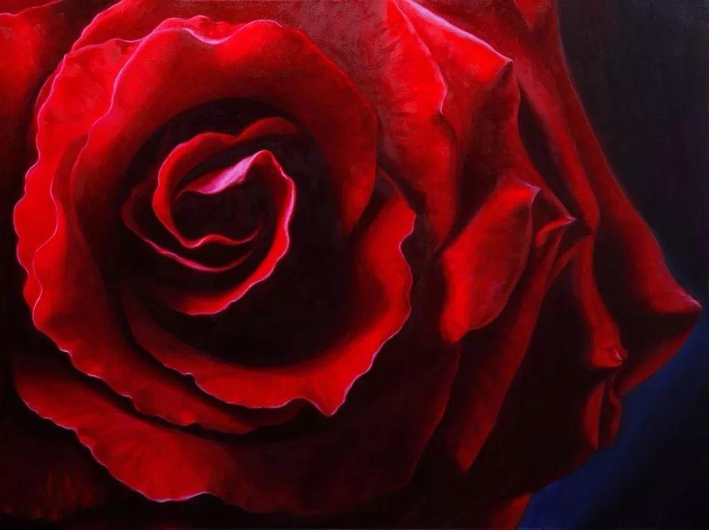 七夕,玫瑰插图3