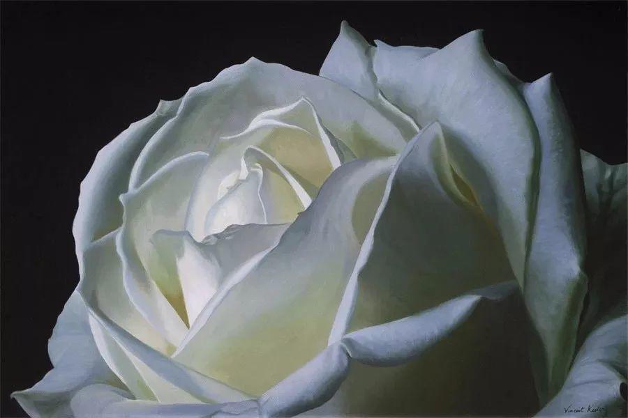 七夕,玫瑰插图29