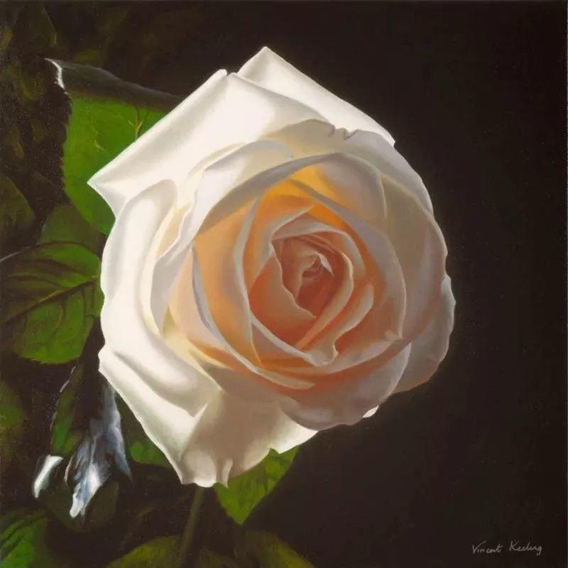 七夕,玫瑰插图31