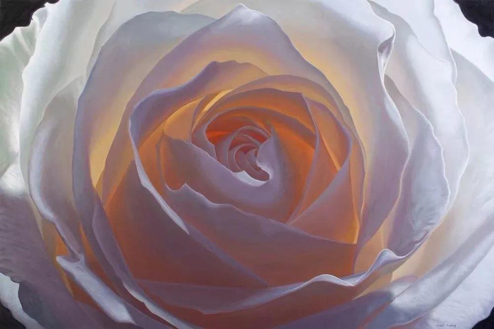 七夕,玫瑰插图65
