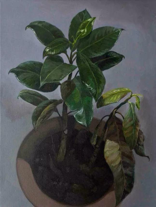 纪念中俄建交70周年油画作品展(二)插图151