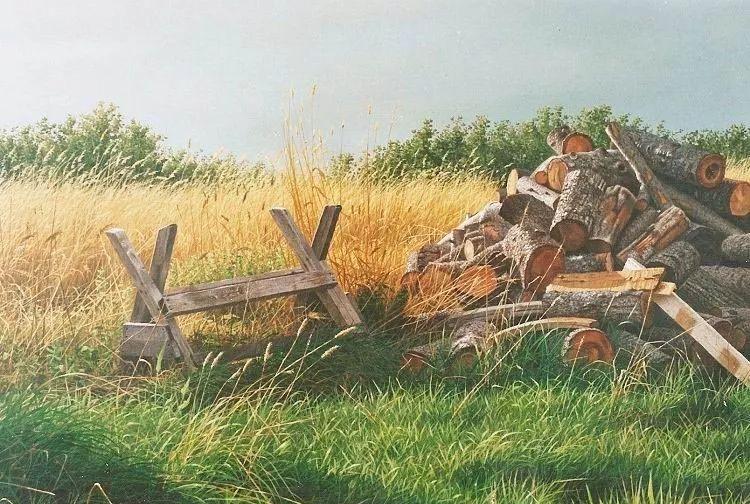 完美主义 加拿大画家Brian lasaga丙稀酸绘画插图39