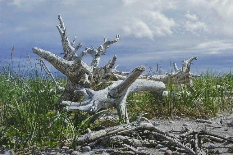 完美主义 加拿大画家Brian lasaga丙稀酸绘画插图41