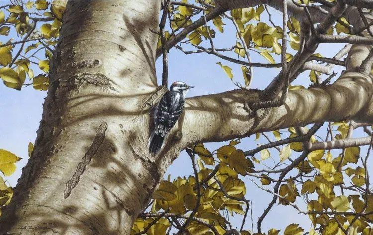 完美主义 加拿大画家Brian lasaga丙稀酸绘画插图55