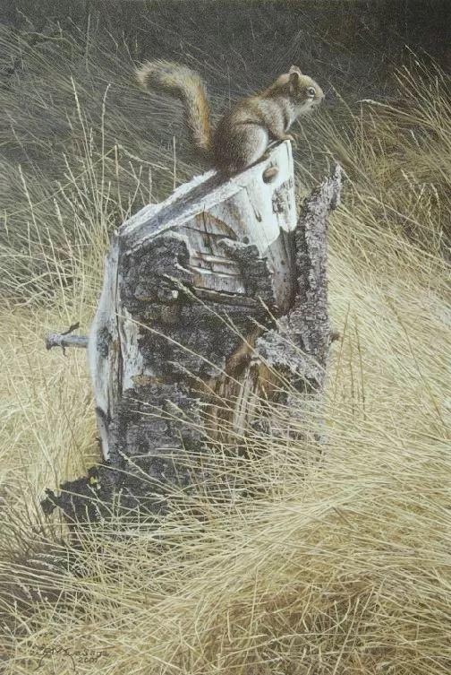 完美主义 加拿大画家Brian lasaga丙稀酸绘画插图57