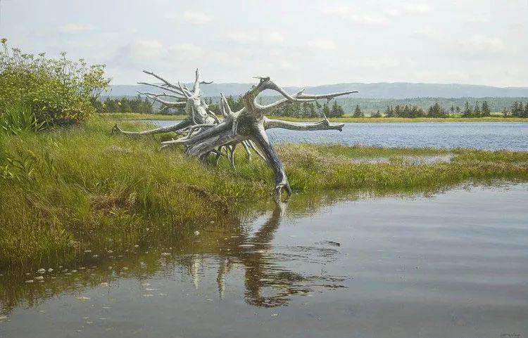完美主义 加拿大画家Brian lasaga丙稀酸绘画插图58