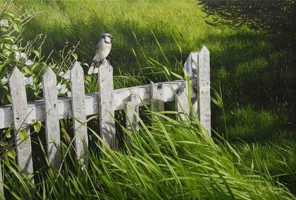 完美主义 加拿大画家Brian lasaga丙稀酸绘画插图59