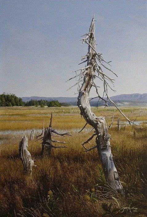 完美主义 加拿大画家Brian lasaga丙稀酸绘画插图64