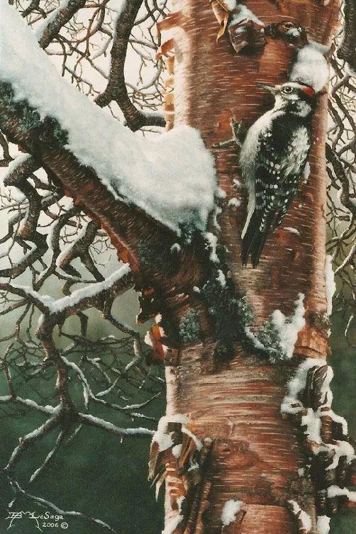 完美主义 加拿大画家Brian lasaga丙稀酸绘画插图65