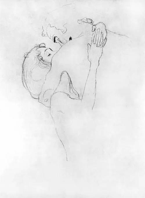 价值10亿,女性妖娆的线条——克里姆特插图157