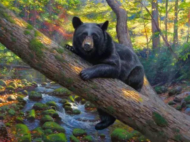 触动你视觉——美国乡村美景插图31