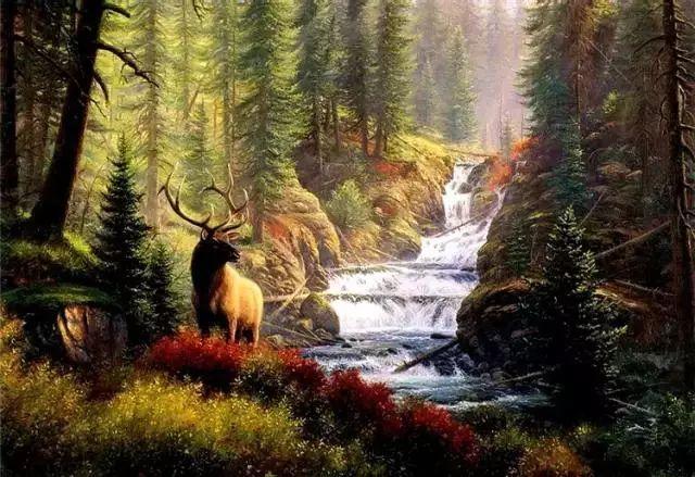 触动你视觉——美国乡村美景插图35