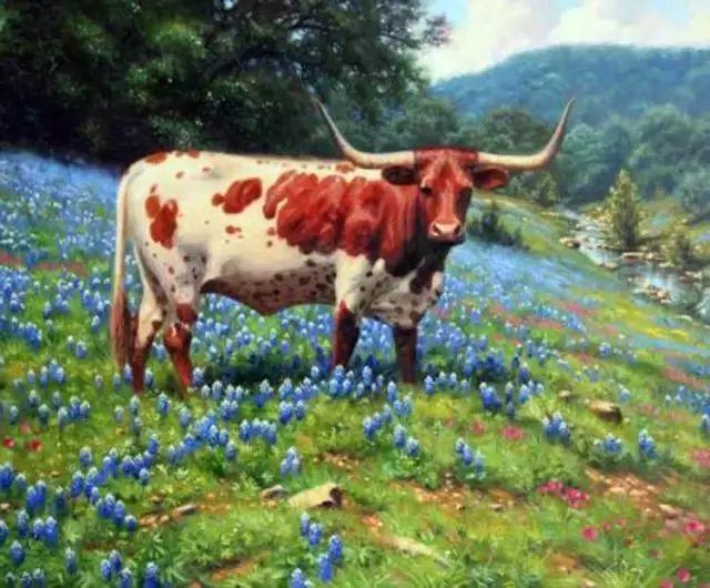 触动你视觉——美国乡村美景插图37