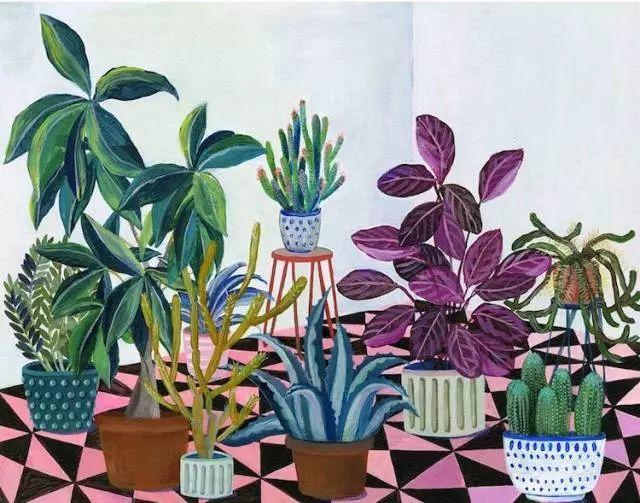 她的植物画里,总能感受到栩栩如生插图
