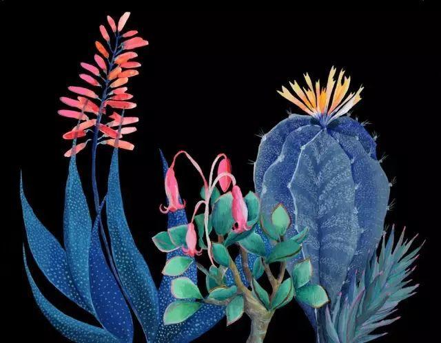 她的植物画里,总能感受到栩栩如生插图7