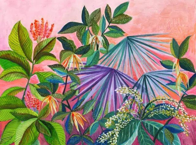 她的植物画里,总能感受到栩栩如生插图9