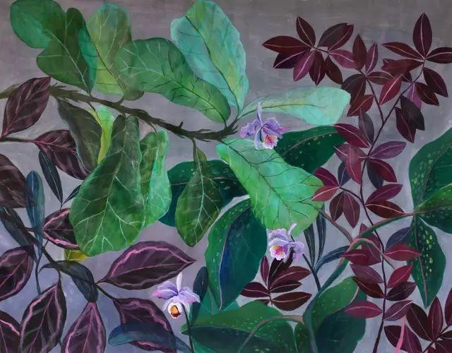 她的植物画里,总能感受到栩栩如生插图12