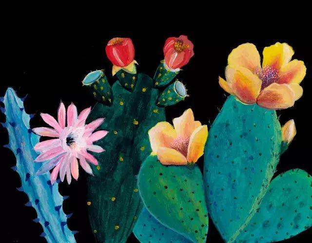 她的植物画里,总能感受到栩栩如生插图15