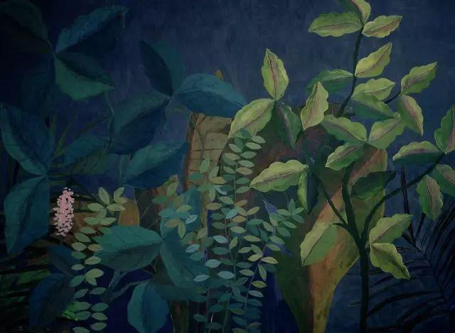 她的植物画里,总能感受到栩栩如生插图18