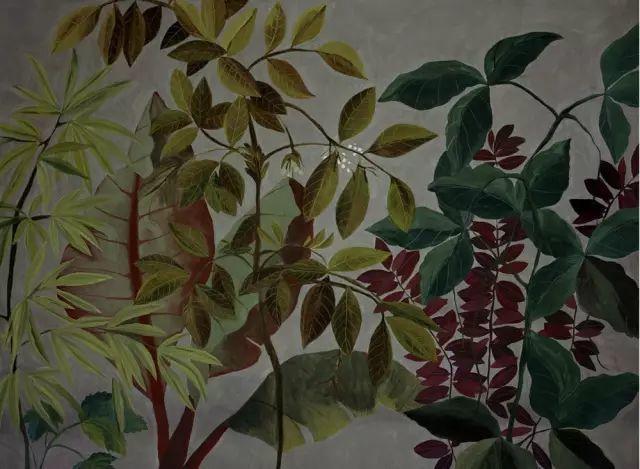 她的植物画里,总能感受到栩栩如生插图24