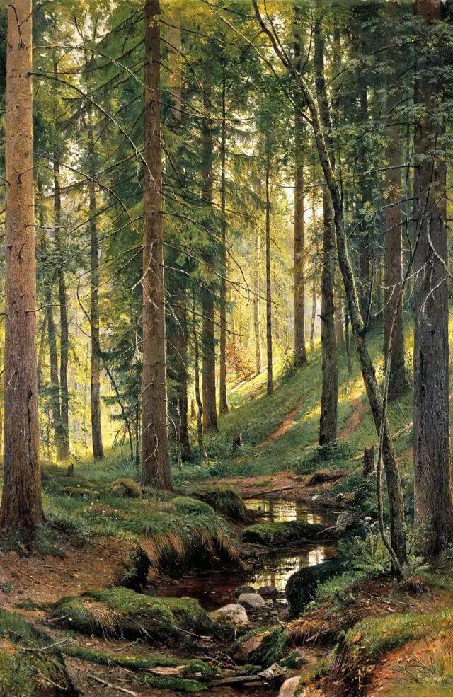 """他一生为万树传神写照 被人们誉为""""森林的歌手""""插图"""